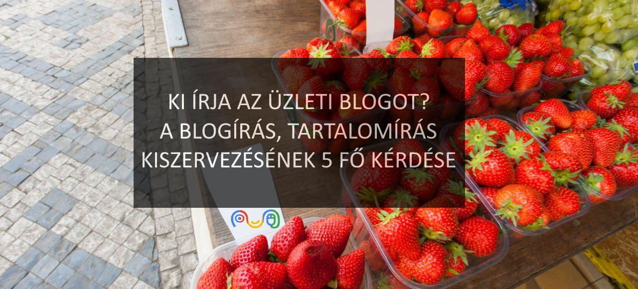 Blogger a cégben, a blogolás kiszervezése